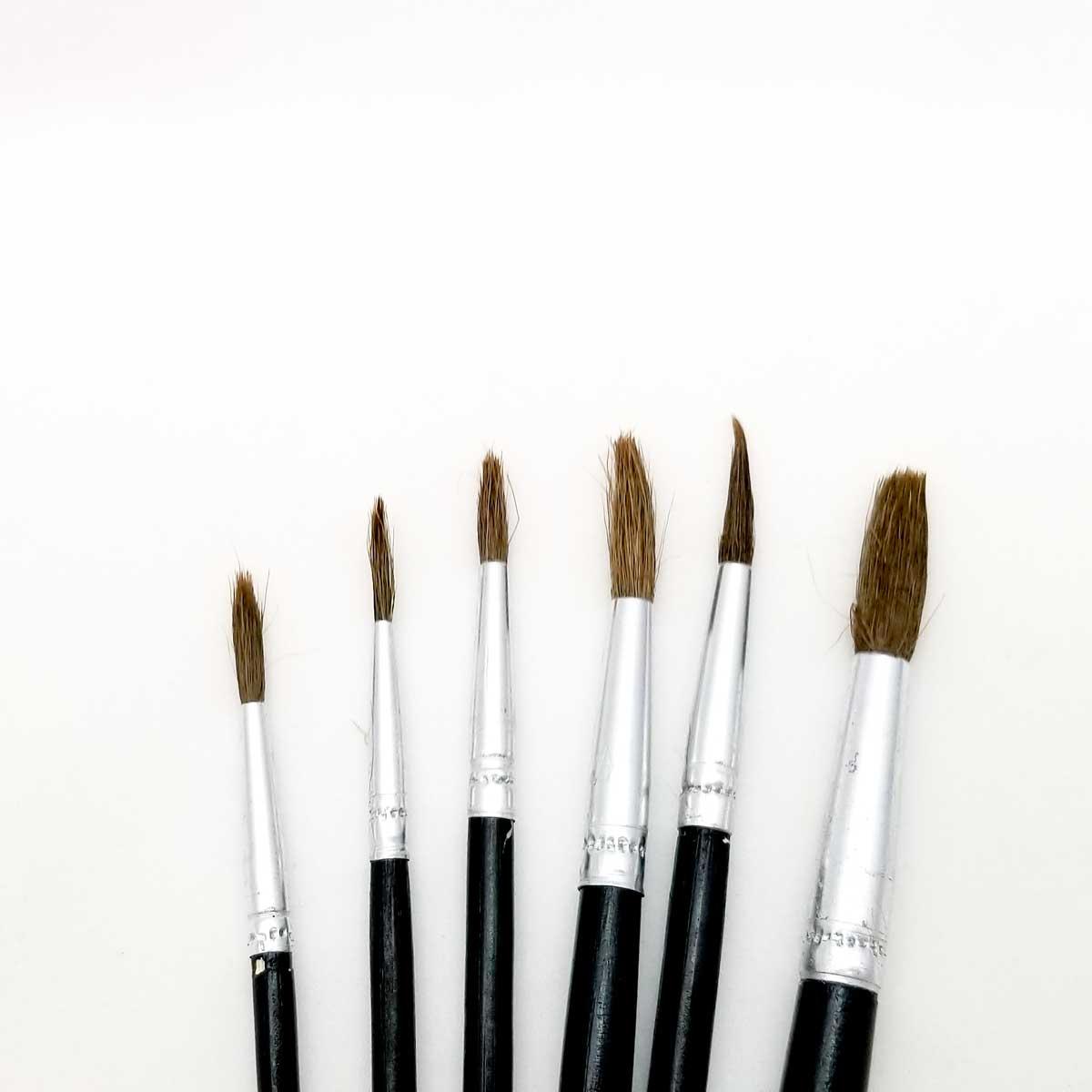 Round Paint Brushes – Set of 6